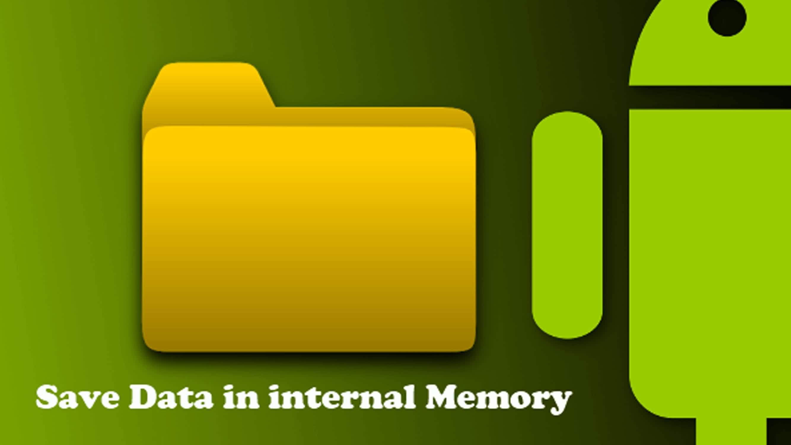 Internal Memory Data